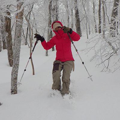 パウダーの新雪を走って下ることもあります
