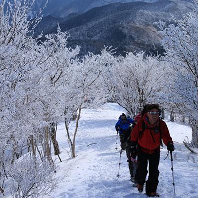 山頂までのルートを知り尽くしたガイドが案内します