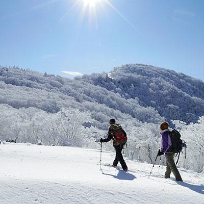 誰も歩いていない雪原を踏みしめて歩きます