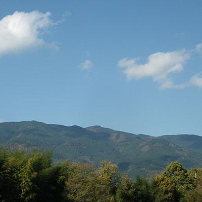 山ランチ、最高です